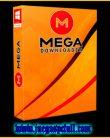 MegaDownloader | Programa para Descargar de MEGA
